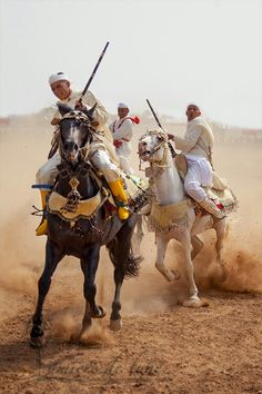 Fantasia maroc
