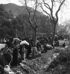 Spain - 1939. - GC - Réfugiés espagnols, Le Perthus près de Perpignan probablement en 1939 après la chute de Barcelone