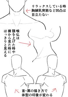 Learn To Draw People - The Female Body - Drawing On Demand Male Figure Drawing, Body Reference Drawing, Human Drawing, Body Drawing, Drawing Reference Poses, Anatomy Reference, Drawing Poses, Drawing Ideas, Neck Drawing