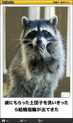 彼にもらった土団子を洗いきったら結婚指輪が出てきた