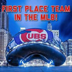 Cubs Chicago Cubs Pictures, Chicago Cubs Fans, Chicago Cubs Baseball, Baseball Party, World Series Winners, Cubs World Series, Cubs Players, Cubs Team, Bear Cubs
