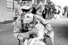 Marine Corps Homecoming, Camp Pendleton CA  #military #homecoming #usmc #dog