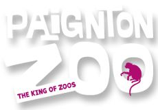 Admission and Ticket Prices Family Bar, Family Days Out, Zoo Tickets, Places To Visit Uk, Zoo Logo, Devon Holidays, Indoor Play Areas, Camping Site, South Devon