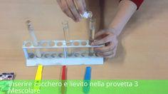 In laboratorio: Fermentazione/Lievitazione