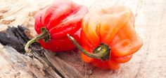Serrano Vs. Habanero: PepperScale Showdown #spicy #cooking #foodie