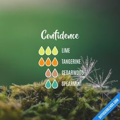 Confidence essential oil blend