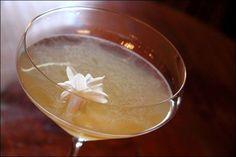 Jasmine martini in Hyderabad, India  Brad A Johnson (the blog)