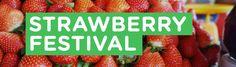 Strawberry Festival | YuneOh