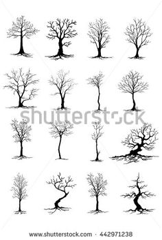 Tree Stock Photos, Images, & Pictures | Shutterstock