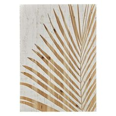 Palm Leaf Wood Panel Print On Wood