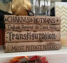 DIY Harry Potter spellbooks/textbook covers ~ Use paper grocery bags to wrap around books, write with a Sharpie, burn edges slightly for a distressed look