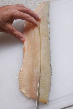 Here are three step-by-step cleaning techniques for completely removing Y-bones from fillets perfect for any fish recipe. Bonus Y-Bone removal video! Woodworking Garage, Woodworking For Kids, Woodworking Crafts, Woodworking Workbench, Woodworking Classes, Cleaning Fish, Intarsia Woodworking, Woodworking Techniques, Wood Working For Beginners