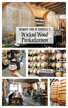 Brewery Tour at Asheville's Wicked Weed Funkatorium (Special facility and barrel-house/Tasting room for their world-class Belgian-style Sour beers) Sumptuous Living Ashville North Carolina, Ashville Nc, Cities In North Carolina, North Carolina Mountains, Belgian Style, National Parks Usa, Tasting Room, Best Beer, Amigurumi