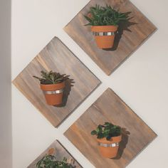 Display your favorite small plants in a fresh, new way with a modern wall planter. With just a few simple tools, you can create one of your own to hang plants in any room of your home. Indoor Garden, Indoor Plants, Indoor Bonsai, Garden Art, Garden Design, Garden Ideas, Modern Wall, Modern Decor, Trench Drain Systems