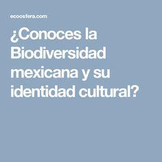 ¿Conoces la Biodiversidad mexicana y su identidad cultural?