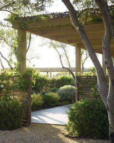Saule tressé. Outdoor Rooms, Outdoor Gardens, Outdoor Living, Willow Fence, Garden Care, Garden Tips, Best Perennials, Low Maintenance Garden, Vegetable Garden Design