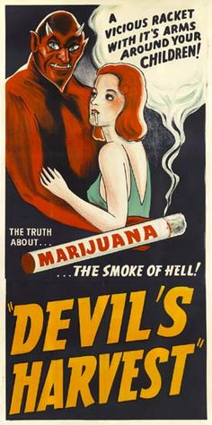 -DEVILS HARVEST, why don't we just legalize it and make state and federal tax dollars, like we don't need the money. taxing people  for something they want, what a concept !
