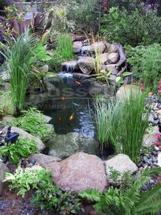 Small Backyard Ponds, Ponds For Small Gardens, Backyard Water Feature, Small Ponds, Water Gardens, Backyard Waterfalls, Ponds With Waterfalls, Garden Waterfall, Small Waterfall