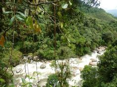 Salto de Candelas Andes Mountains, Tropical Forest, Heritage Site, Public Transport, Garden Bridge, The Locals, Waterfall, Environment, Outdoor Structures