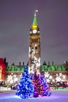 Parliament buildings in Ottawa, Canada all ready for Christmas and the holiday season Christmas Scenes, Christmas Lights, Christmas Fun, Christmas Destinations, Canada Destinations, Ottawa Canada, Ottawa Ontario, Ottawa Parliament, Canada Christmas