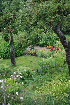 Garden allotments in Landskrona in Sweden (Citadellets koloniområde).