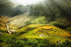Rice fields on terraced at Mu Cang Chai Photo by DAI TRINH — National Geographic Your Shot