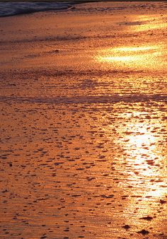 Sunset transforms the beach into copper and bronze. Color Cobre, Copper Color, Copper Beach, Shades Of Gold, Brown Aesthetic, Copper Metal, Metallic Colors, Ocean Beach, Earth Tones
