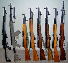 Sks rifles all the variants. These are some of the finest shooting rifles I have ever shot.