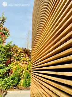 Ażurowe, drewniane panele osłonowe do ogrodu Pergola, Texture, Wood, Crafts, Surface Finish, Manualidades, Woodwind Instrument, Outdoor Pergola, Timber Wood