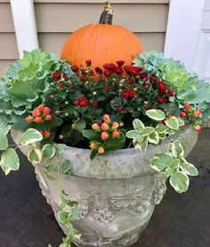 Simple Fall planter pumpkin mum cabbage hypericum berries and vinca from the summer planting Simple Fall Flower Pots, Fall Flowers, Fall Flower Gardens, Mum Planters, Autumn Planters, Planter Garden, Autumn Garden Pots, Fall Potted Plants, Ivy Plants