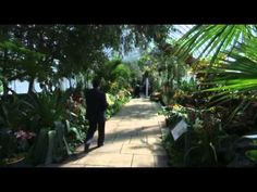 The Orchid Show Comes to New York City - As temperatures take a tumble around the country, The New York Botanical Garden welcomes spring with the 12th annual Orchid Show. The exhibit opens March 1st, and runs through April 21st. (Feb. 27) : AssociatedPress - youtube #NYC #flowershow