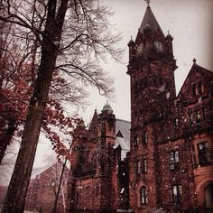 Mt. Holyoke College
