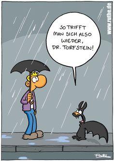Die 1401 Besten Bilder Von Funny Lustig Komik Funny Cartoons