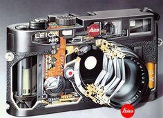 M6 Cutaway