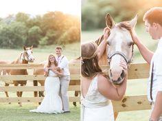 Stephen & Kelly | Khimaira Farm, Luray Virginia Wedding Photographer