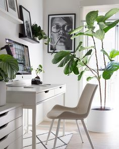 Office | Workspace | Study | Desk | Office Inspo | Workspace Inspo | Workspacie | Desk Goals | Study Inspo | Plants | Indoor Plants | Plant Styling | Greenery | Home Inspo | Interior Inspiration | Monochrome | Black & White | Study Space | Artwork | Gallery Wall Study Desk, Study Space, Office Inspo, Office Workspace, Space Artwork, Plants Indoor, Video Camera, Workspaces, Interior Inspiration