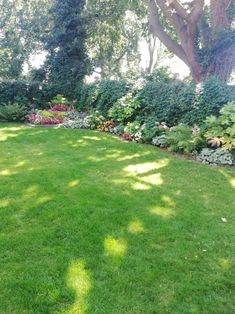 2 lawn treatments and Customer happy. Looking much greener with the Feed application