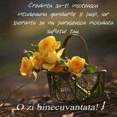 Spiritual Quotes, Nature Pictures, Glass Vase, Spirituality, Plants, Instagram, Decor, Bible, Peace