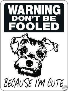 Mini Schnauzer Security Aluminum Sign Warning Dog 3328   eBay