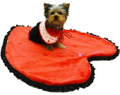 Aww Valentines Day wouldnt be the same without a big heart rug #dog #valentine