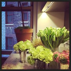 It's Winter outside but Spring inside my apartment! #petersom