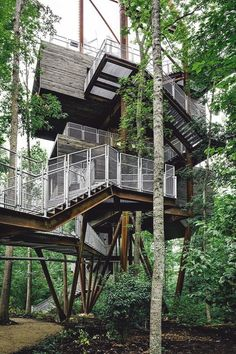 Sunstainable Treehouse by Mithun