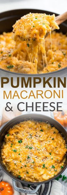 This recipe for Creamy Pumpkin Macaroni & Cheese takes only 30 minutes to make on the stovetop for a perfect weeknight meal for fall. Best of all, full of cozy autumn flavors and a mix of three popular cheeses: sharp cheddar, mozzarella and cream cheese. #stovetop #macandcheese #onepot #pumpkin #autumn #30minute #comfortfood #cheese #pasta