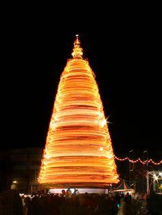 Long Exposure Photography | Christmas Tree