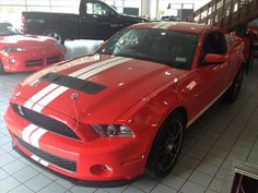 1ZVBP8JS5C5240538 - 2012 Ford Shelby GT500 2DR CPE SHELBY GT500 - $44777 - 866-270-1896