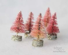Pink bottlebrush trees!!! Bebe'!!! These are cute little trees!!!