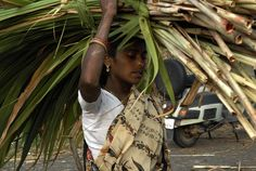 woman with sugercane leaves by Samuel Johnson on 500px