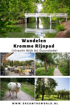 Walk Around The World, Around The Worlds, Photography Storytelling, Road Trip Adventure, Walkabout, Landscape Pictures, Utrecht, Staycation, Holiday Destinations