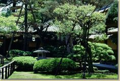 About Japanese Gardens - Ito-tei
