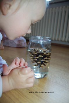 Science For Kids, Holidays And Events, Experiment, Montessori